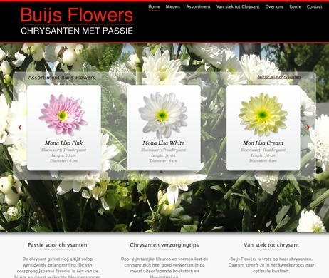 Buijs Flowers
